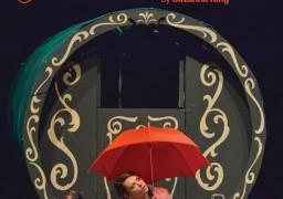 Crystal's Vardo Promotional Flyer